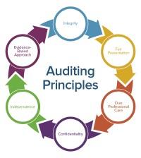 Self-Inspection & Audit